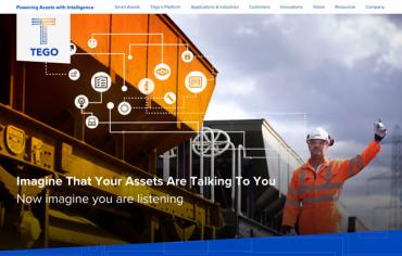 Tego Inc., partnership for branding, logo design, web development and media relations